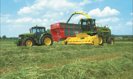 Unleashing the value of your Grass Silage