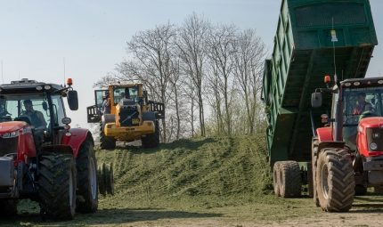 Why should I use Silage Additives