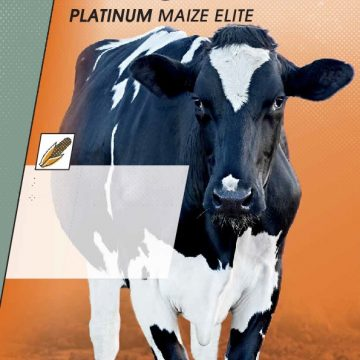 Magniva Platinum Maize Elite