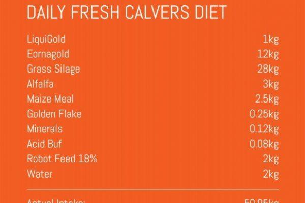 SN Calvers Diet