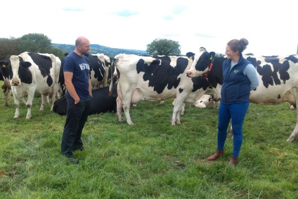 Specialist nutrition Racel on farm with John O Callaghan co Cork