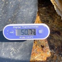 Temperature of silage in the vicinity of the sheet damage