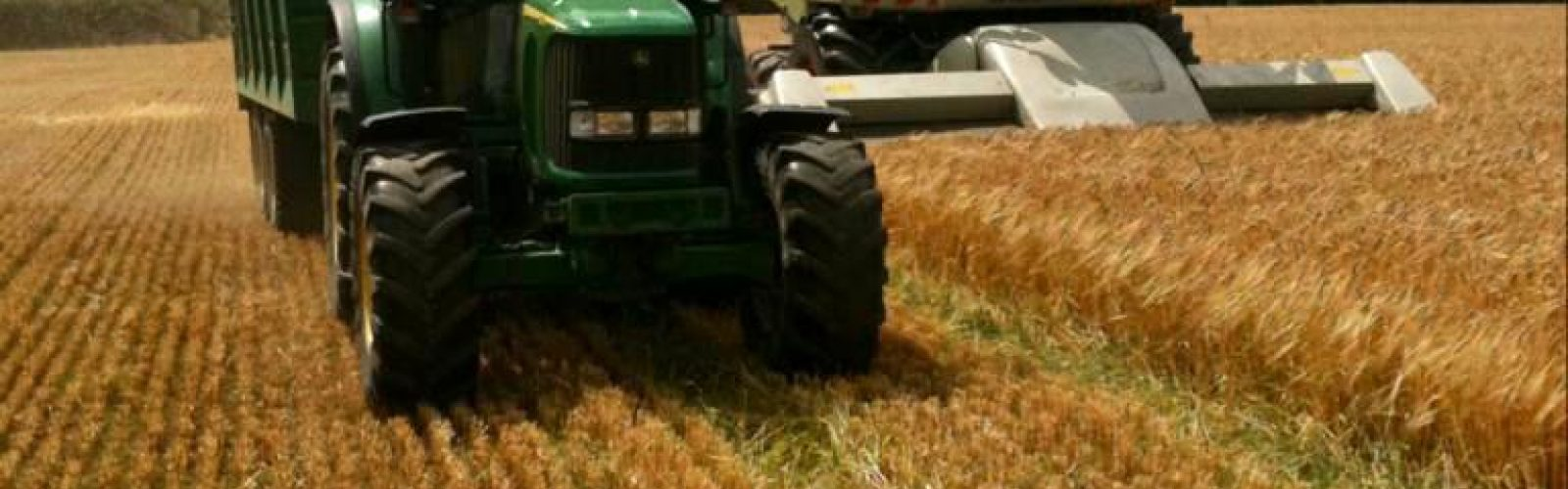 Act now to know what is required to meet your feed budget for the winter