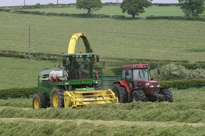 Silage Additive