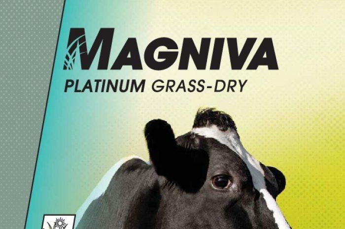 Magniva Platinum Grass Dry
