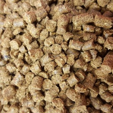Dried Feeds